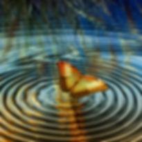 Butterfly Ripples_edited.jpg