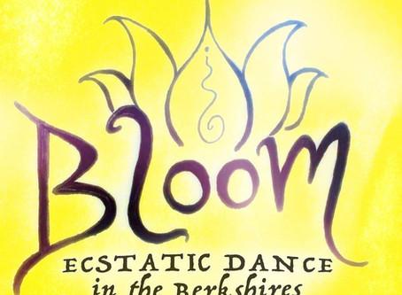 Ecstatic Dance in the Berkshires!!! (Fri, 5/10)