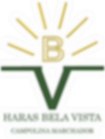 logo, Santa Maria Vip, haras Bela Vista, Bela Vista, Campolina, Haras