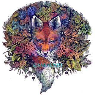 FOX WEB.jpg