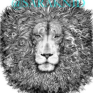 LION WEB.jpg
