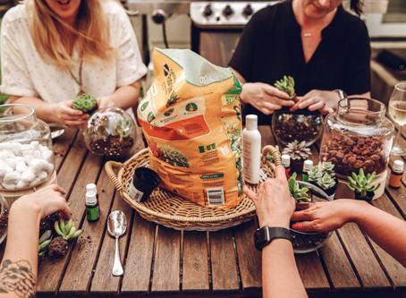 NON TOXIC HOME: DIY Succulent Diffusers
