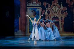 New Theatre Cinderella