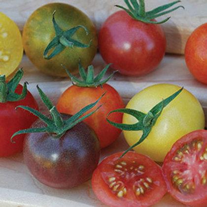 Heirloom Cherry Tomatoes -2 Lbs