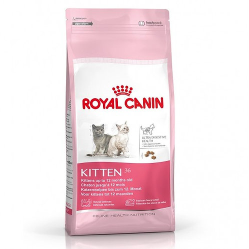 ROYAL CANIN F Kitten 36 1.5 Kg