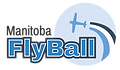 FlyBall Logo-01.png