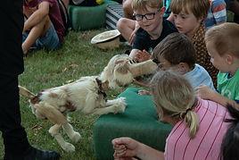 Fabiola og Hunden71.jpg