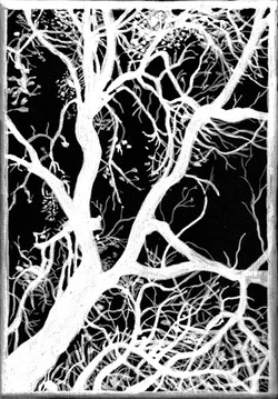 reverse+tone+treesm