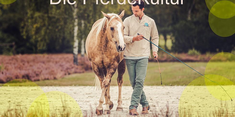 Tao to Horses - Die PferdeKultur