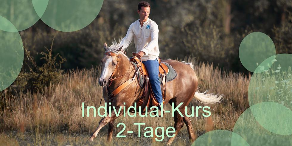 Tao to Horses - Individualkurs - Wochenendkurs