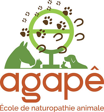 logo_agape_naturo_animale_vertical_coule