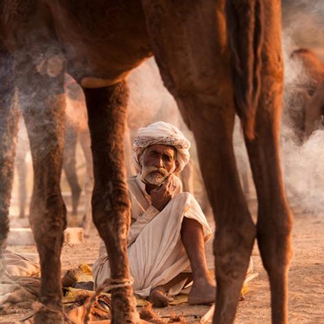 Pushkar Mela, Indien - Fotografin Runa Lindberg