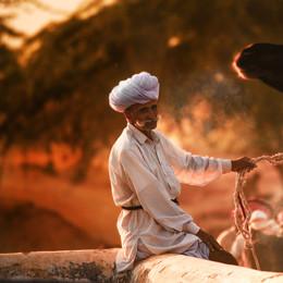 Kamel Fest in Indien - Fotografin Runa Lindberg