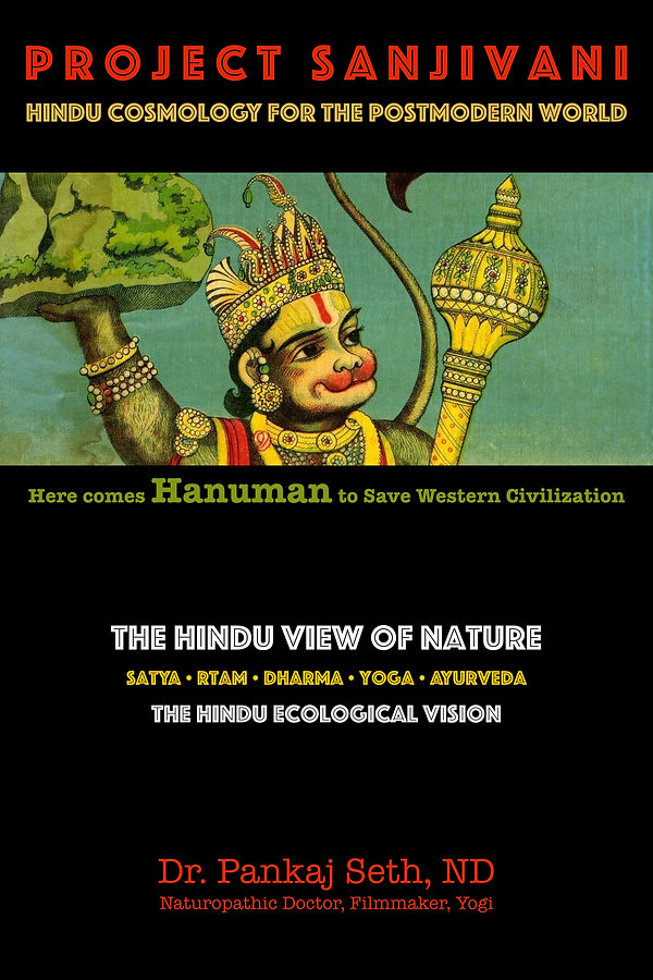 projectsanjivanibookcover.001.jpg