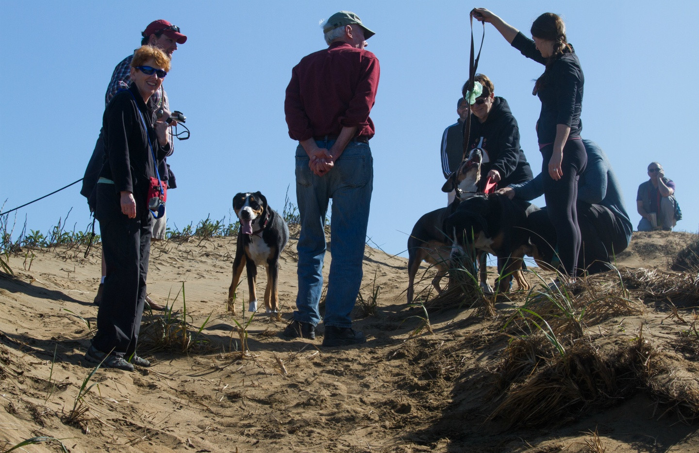 20160213_GGGSMDC Fort Funston (18 of 41)