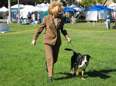 Third Independent Specialty and Sweepstakes, October 20, 2007