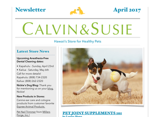 CALVIN & SUSIE APRIL NEWSLETTER