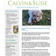 CALVIN & SUSIE NOVEMBER NEWSLETTER