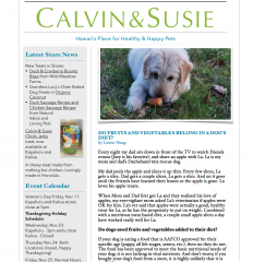 CALVIN & SUSIE NOVEMBER NEWSLETTER
