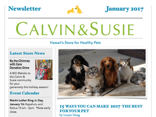 CALVIN & SUSIE JANUARY NEWSLETTER