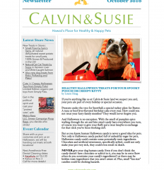 CALVIN & SUSIE OCTOBER NEWSLETTER
