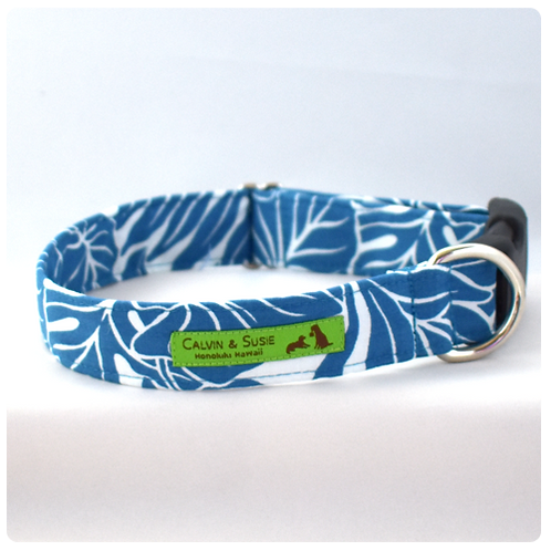 Blue Monstera 2 Collar & Leash