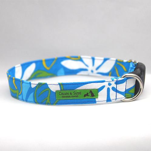 Turquoise Gardenia 2 Collar & Leash