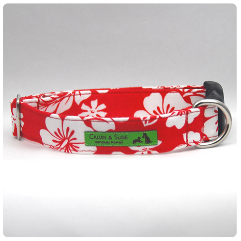 Red Hibiscus 4 Collar & Leash