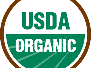 ORGANIC, NATURAL, AND HOLISTIC (AND GMO'S!): WHAT DOES IT ALL MEAN FOR YOU AND YOUR PET?