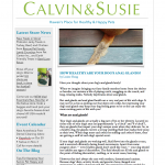 CALVIN & SUSIE SEPTEMBER NEWSLETTER