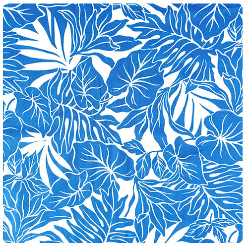 Blue Monstera 2