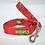 Thumbnail: Red Turtles Collar & Leash