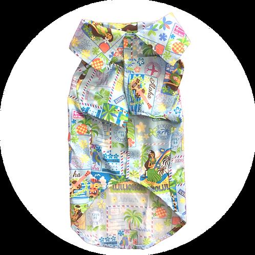 アロハシャツ ポストカード 水色 2.0