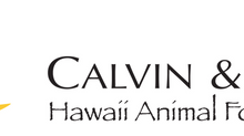 What We Have Been Up To: CALVIN & SUSIE HAWAII ANIMAL FOUNDATION