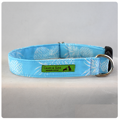 Blue Pineapple 3 Collar & Leash