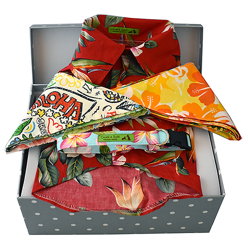 Gift Box - Size Small/Medium