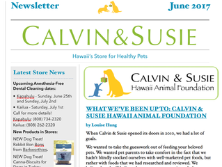 CALVIN & SUSIE JUNE NEWSLETTER