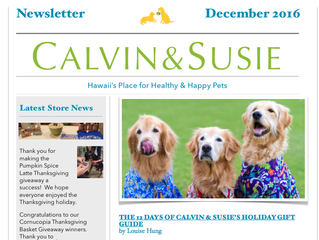 CALVIN & SUSIE DECEMBER NEWSLETTER