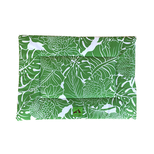 Hiolani - Green Protea