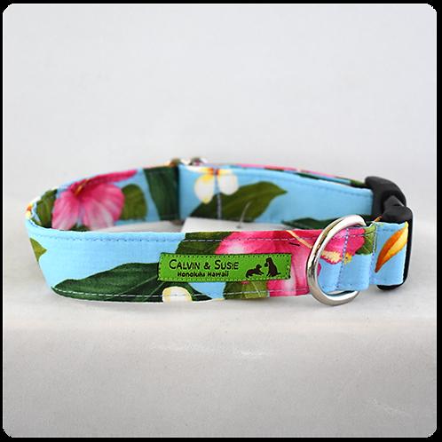 Blue Tropicals 2 Collar & Leash