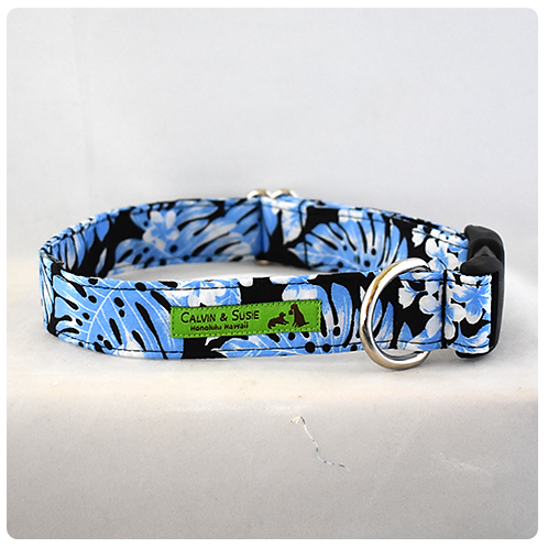 Blue Monstera 4 Collar & Leash
