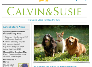 CALVIN & SUSIE MAY NEWSLETTER