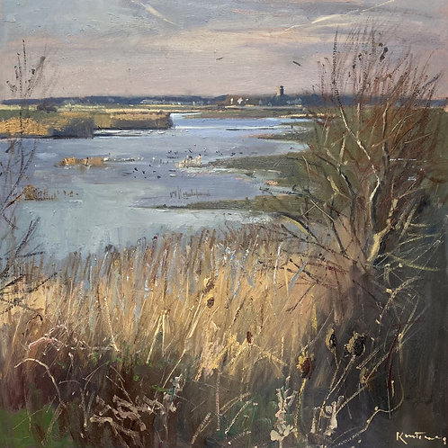 Across the Marsh by Karl Terry