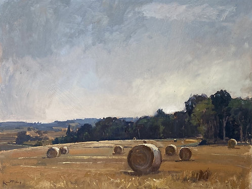 Golden Harvest by Karl Terry