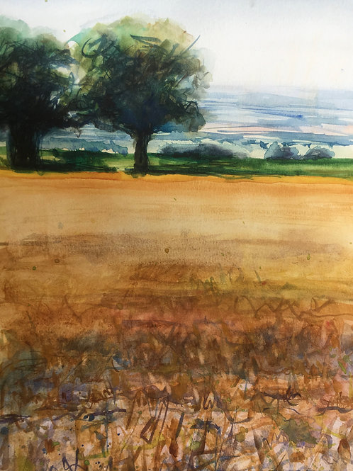 Corn Stubble and Distance by Tin Odescalchi