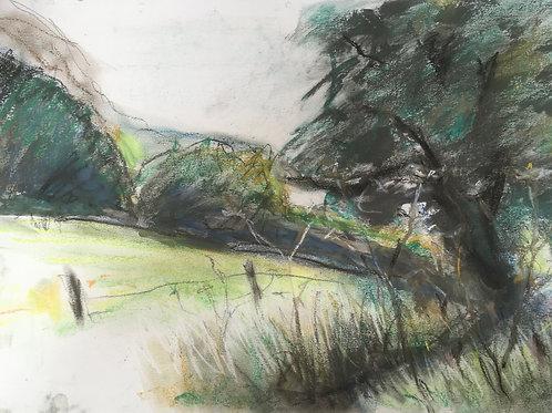 Hillside meets river bank by Tin Odescalchi
