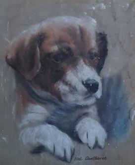 A Foxhound Pup - Neil Cawthorne (1936 - )