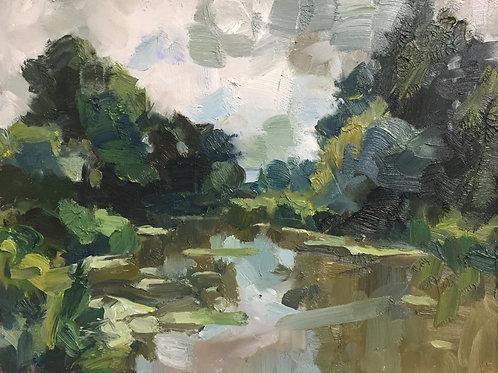 Summer pond by Tim Benson