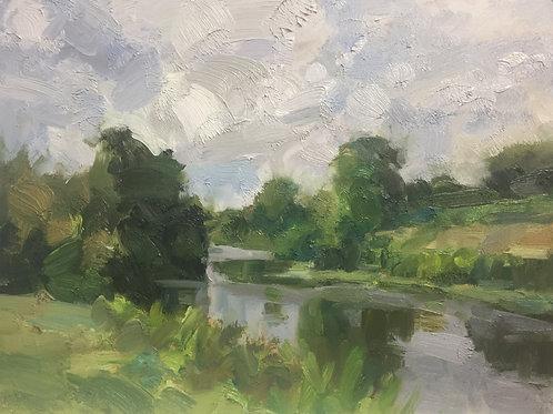 Stream, late spring by Tim Benson