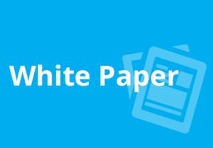 White paper de criptomoeda